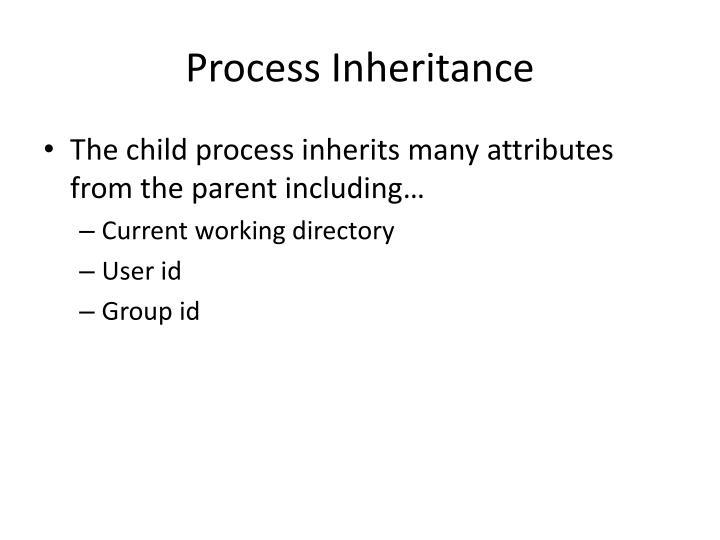 Process Inheritance