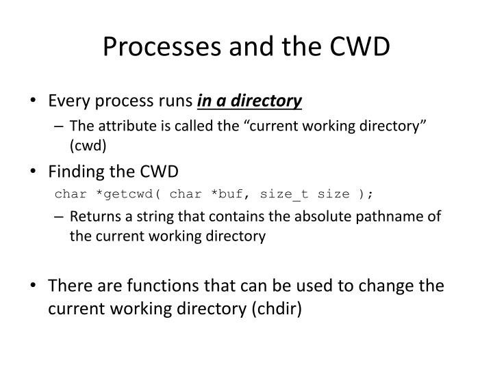 Processes and the CWD