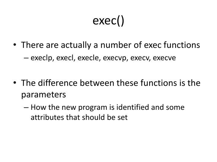 exec()