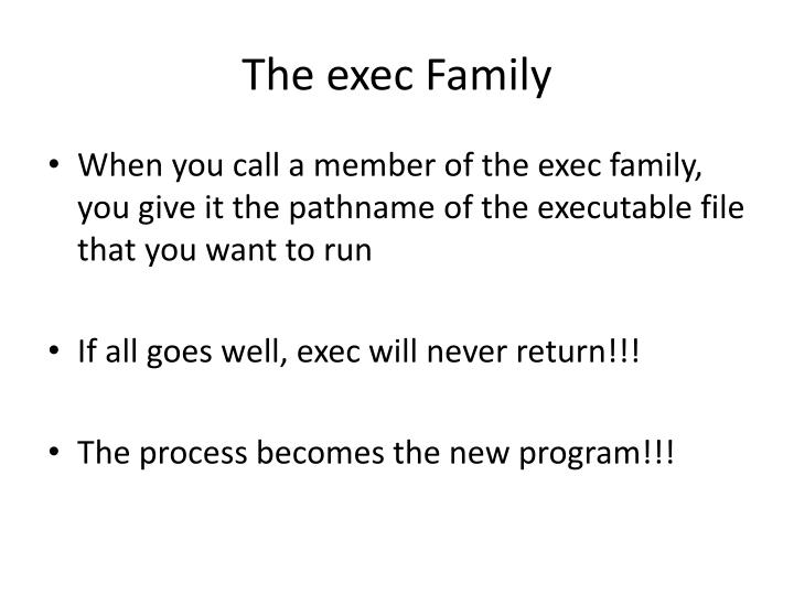 The exec Family