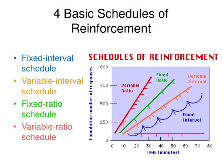 4 Basic Schedules of Reinforcement