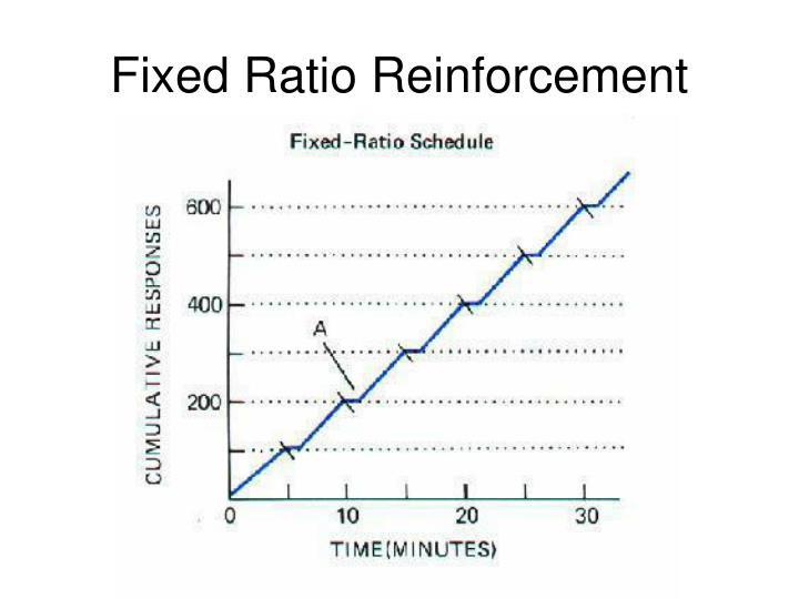 Fixed Ratio Reinforcement