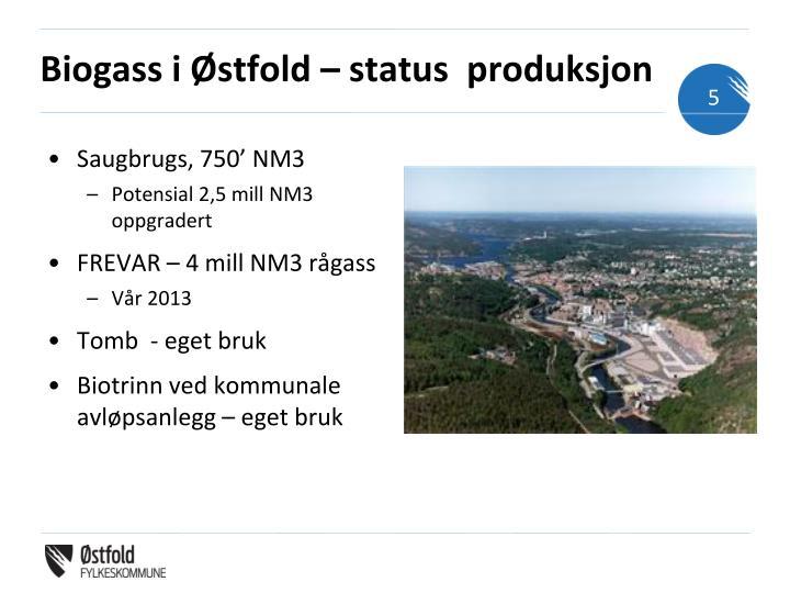 Biogass i Østfold – status