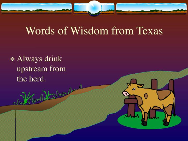 Words of Wisdom from Texas