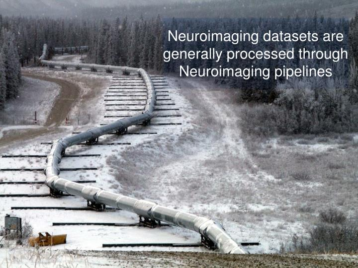 Neuroimaging datasets are generally processed through  Neuroimaging pipelines