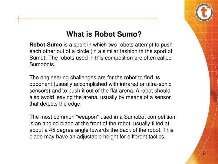 What is Robot Sumo?