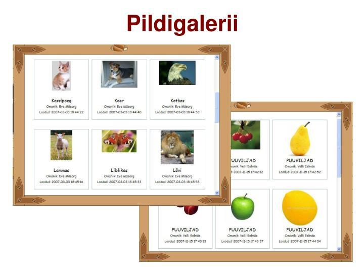 Pildigalerii