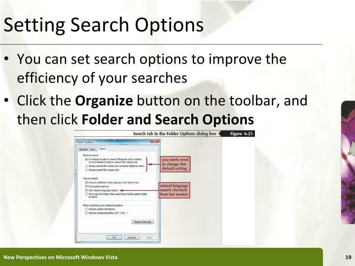 Setting Search Options