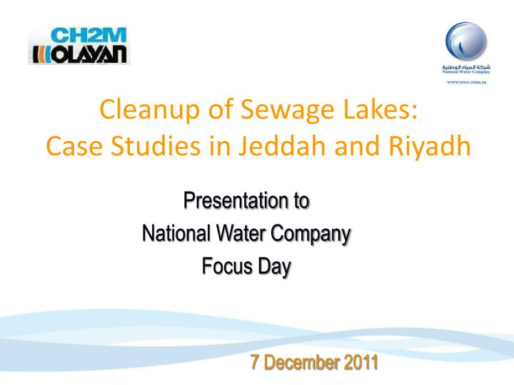 Cleanup of Sewage Lakes: