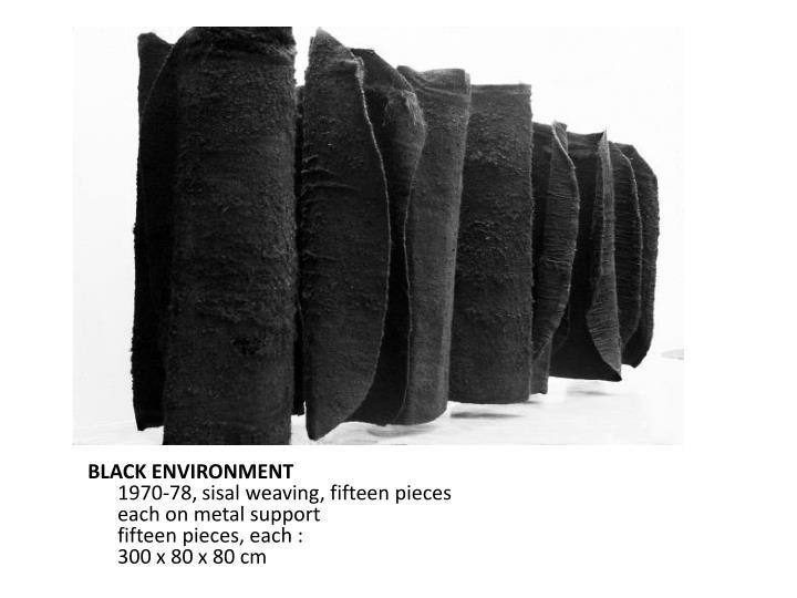 BLACK ENVIRONMENT