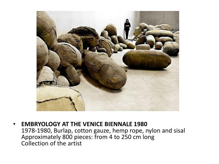 EMBRYOLOGY AT THE VENICE BIENNALE 1980
