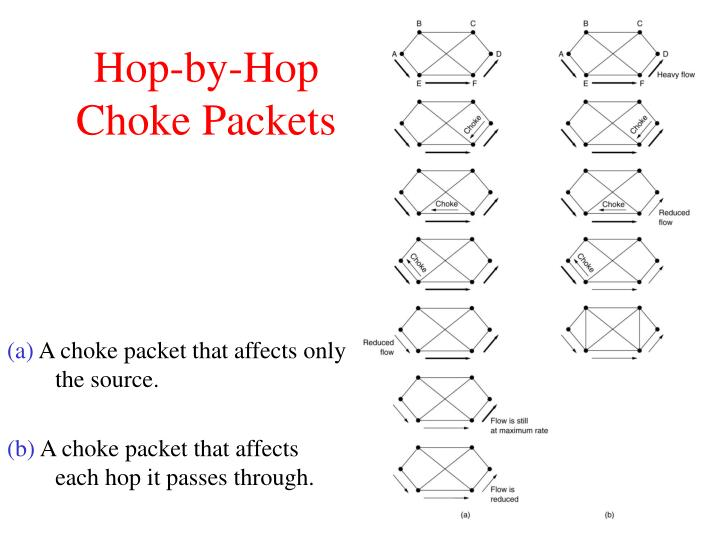 Hop-by-Hop Choke Packets