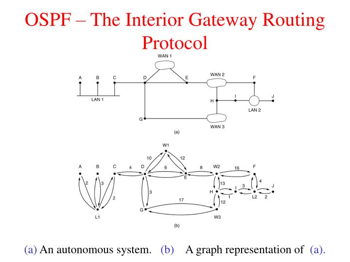 OSPF – The Interior Gateway Routing Protocol