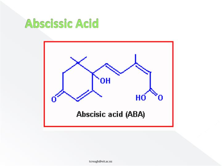 Abscissic Acid