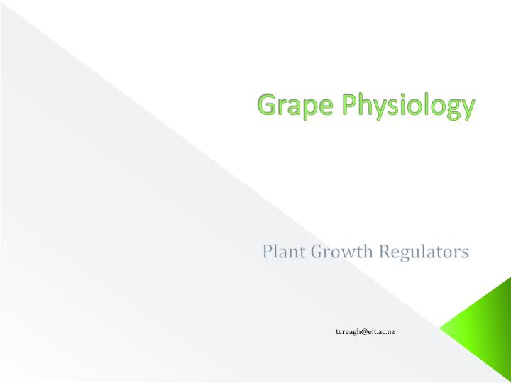 Grape physiology