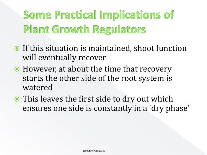 Some Practical Implications of Plant Growth Regulators