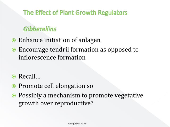 The Effect of Plant Growth Regulators