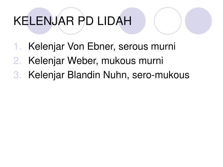 KELENJAR PD LIDAH