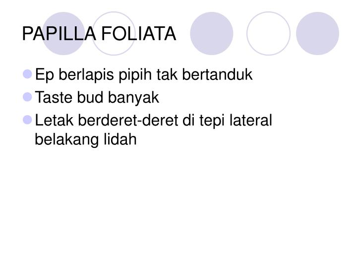 PAPILLA FOLIATA