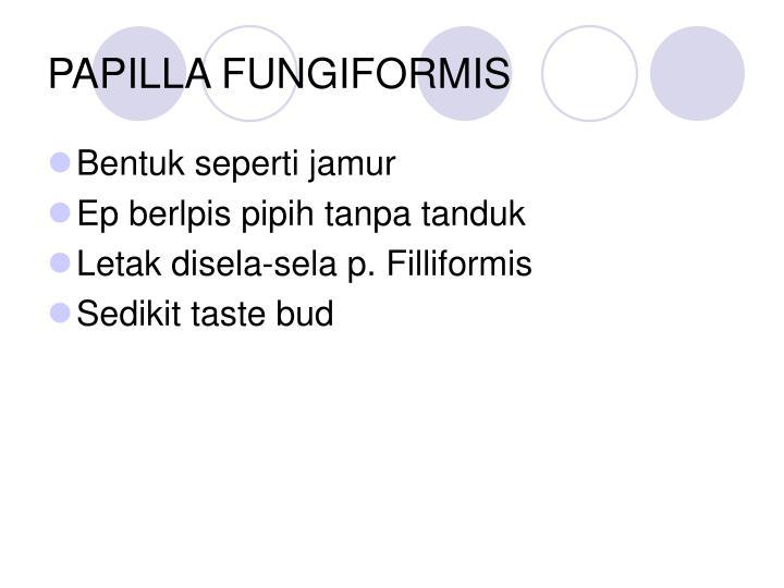 PAPILLA FUNGIFORMIS