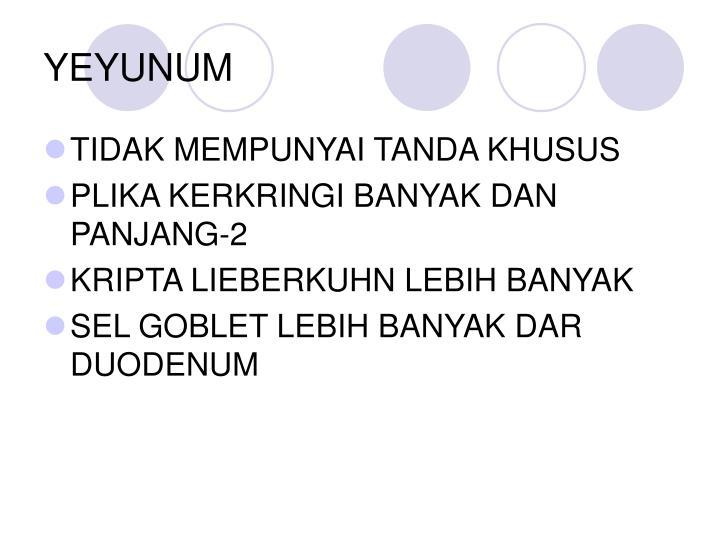 YEYUNUM