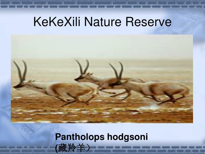 KeKeXili Nature Reserve