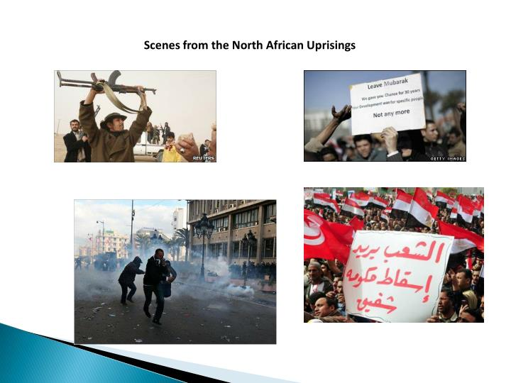 Scenes from the North African Uprisings