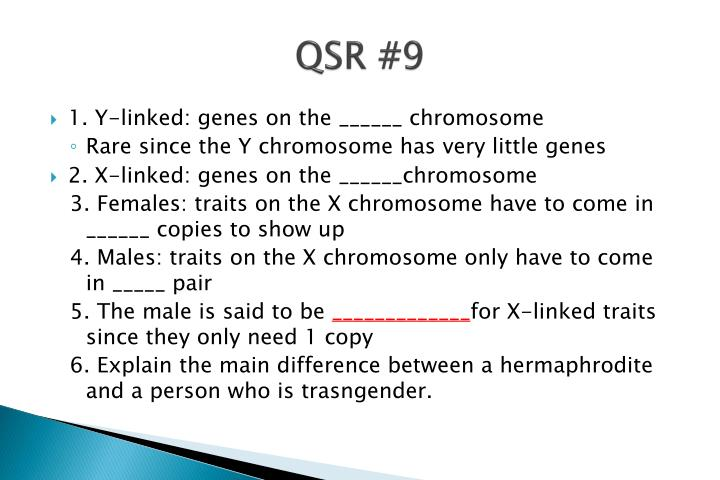 QSR #9