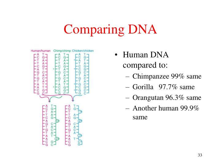 Comparing DNA