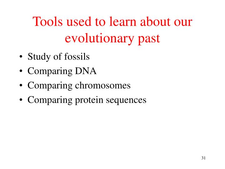 Tools used to learn about our evolutionary past