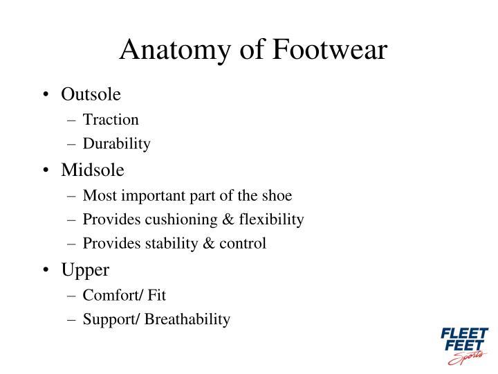 Anatomy of Footwear
