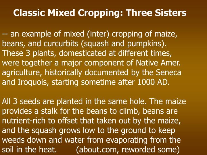Classic Mixed Cropping: Three Sisters