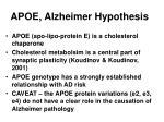 apoe alzheimer hypothesis