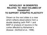 pathology in dendrites relates to high volumes of transport to support synaptic plasticity