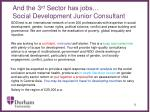 and the 3 rd sector has jobs social development junior consultant