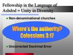 fellowship in the language of ashdod unity in diversity