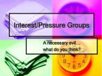 interest pressure groups1