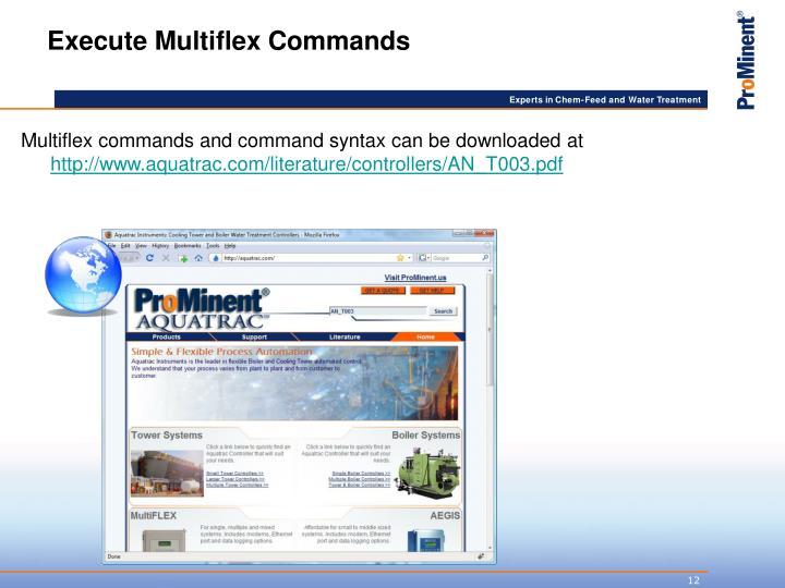 Execute Multiflex Commands