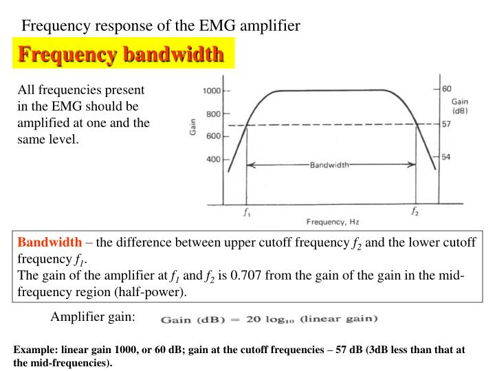 Frequency response of the EMG amplifier