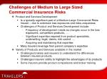 challenges of medium to large sized commercial insurance risks1