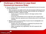 challenges of medium to large sized commercial insurance risks2