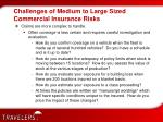 challenges of medium to large sized commercial insurance risks6