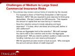 challenges of medium to large sized commercial insurance risks7