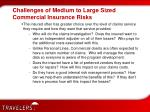 challenges of medium to large sized commercial insurance risks8