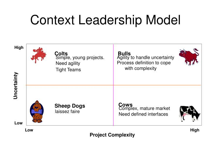 Context Leadership Model