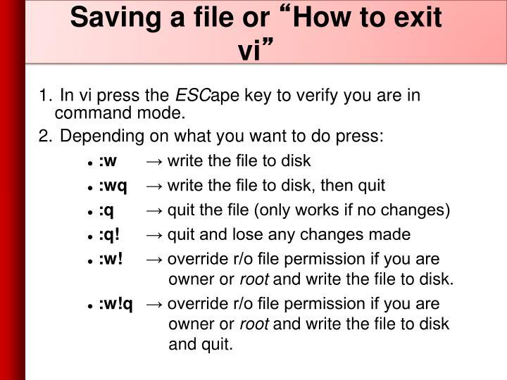 Saving a file or