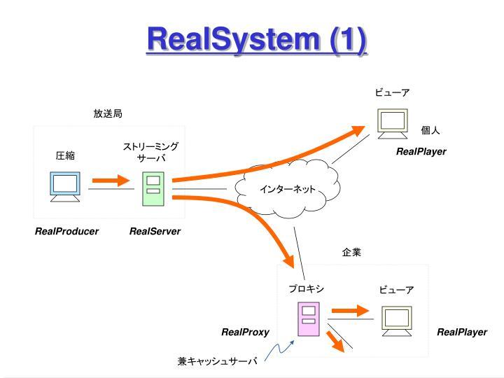 RealSystem (1)
