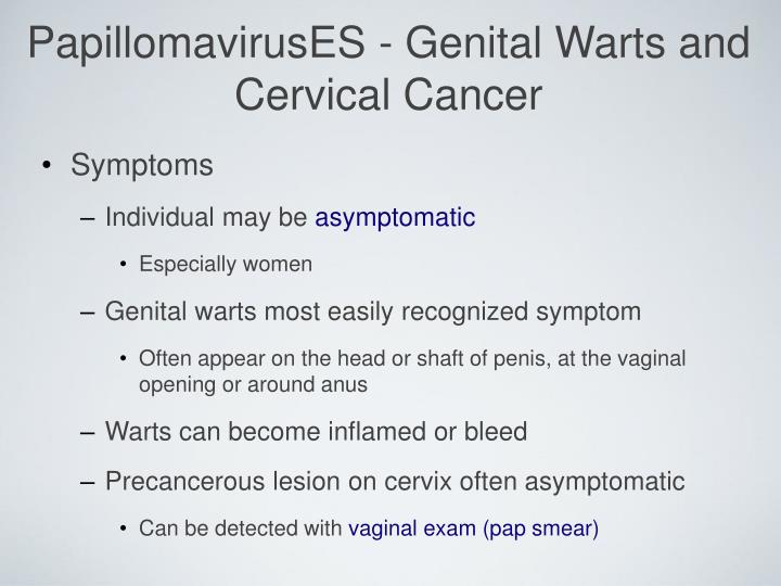 PapillomavirusES - Genital Warts and Cervical Cancer