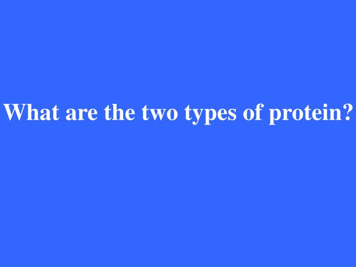 What are the two types of protein?
