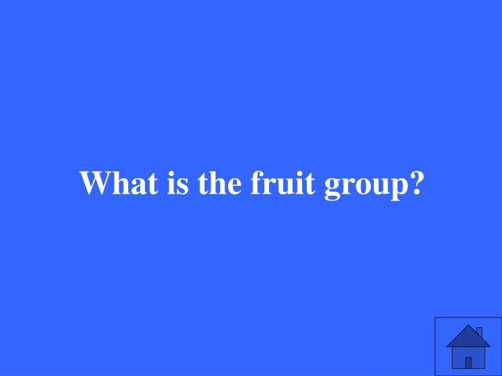 What is the fruit group?